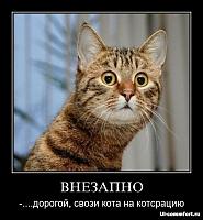 Нажмите на изображение для увеличения Название: 1250181622_podborka_664_01.jpg Просмотров: 759 Размер:57.4 Кб ID:983